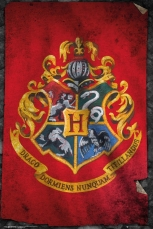 Harry Potter, Hogwarts Flag Maxi Poster