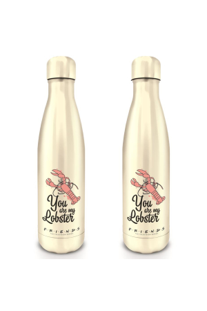 Friends, You Are My Lobster Metal Trinkflasche
