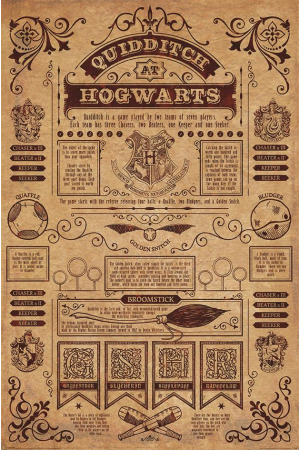 Harry Potter, Quidditch At Hogwarts Maxi Poster