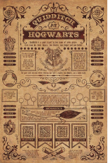 Harry Potter, Quidditch At Hogwarts Maxi Poster