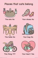 Pusheen, Places Cats Belong Maxi Poster