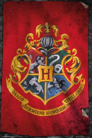 Harry Potter, Hogwarts Flag Maxi Poster
