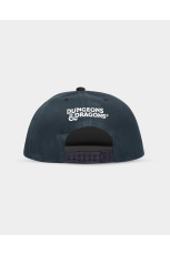Dungeons & Dragons, Drizzt Snapback